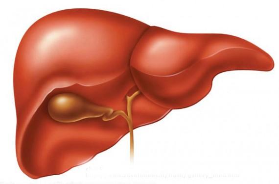 Esteroides Anabólicos, Función Hepática y Exámenes Sanguíneos AST y ALT