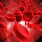 Pausas Entre Ciclos de Esteroides para Hombres en Terapia de Remplazo de Testosterona (TRT)