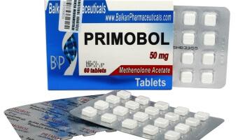 El Ciclo Perfecto Usando Solo Esteroides Anabólicos Orales